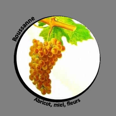 Travaux Vigne Calendrier.A La Vigne Travail En Biodynamie Biodynamic Wine